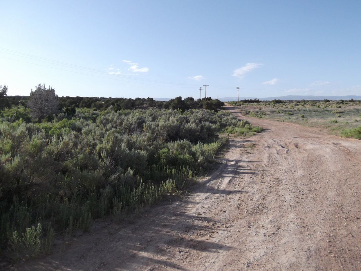 Cove Acres Recreation Lot – Trees – Great Views