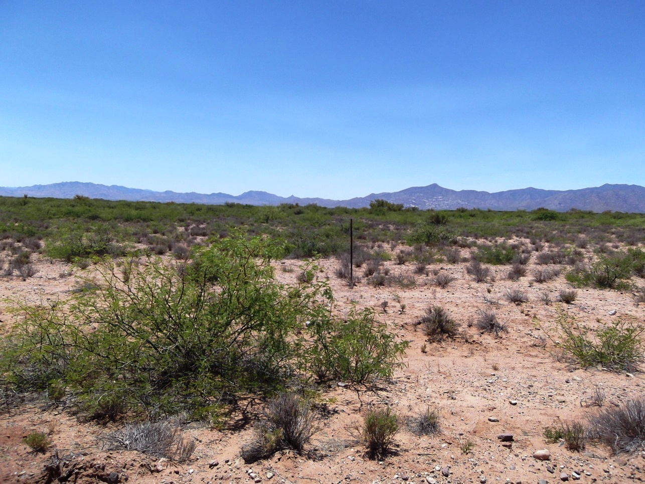 Southern Arizona Mini Ranch – Corner Lot with Power