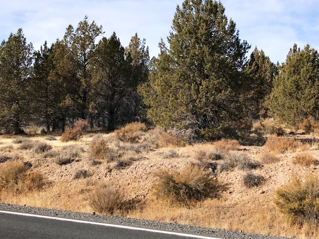 Drews Road 1.54 Acres with Power – Sprague River – Paved Road with Views!