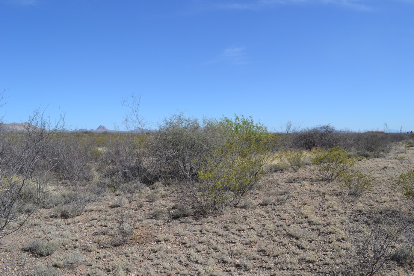 Great Investment Lot – Five Miles North of Douglas, Arizona