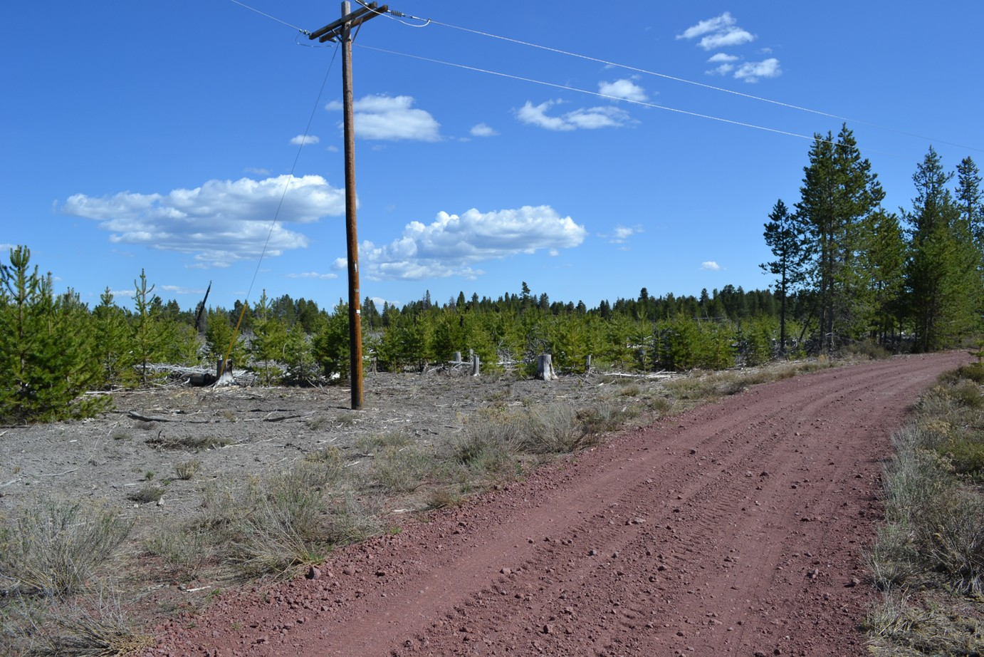 Mt Scott 1.5 Acre Lot Near Crater Lake Southern Oregon – Power – HWY 97