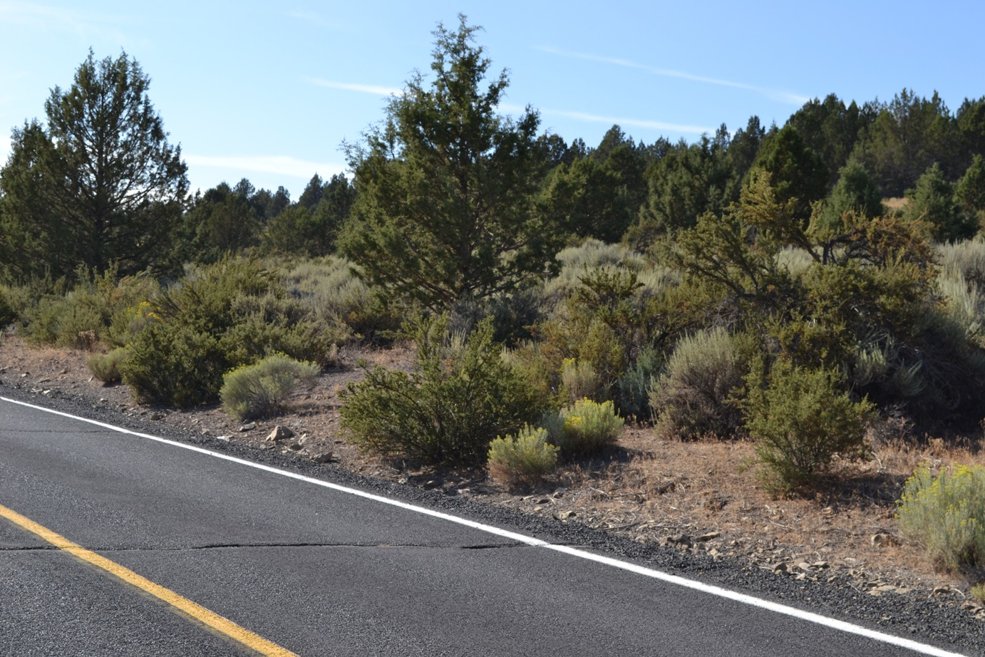 North Side of Drews Road – Great Views – Paved Road with Power – Sprague River