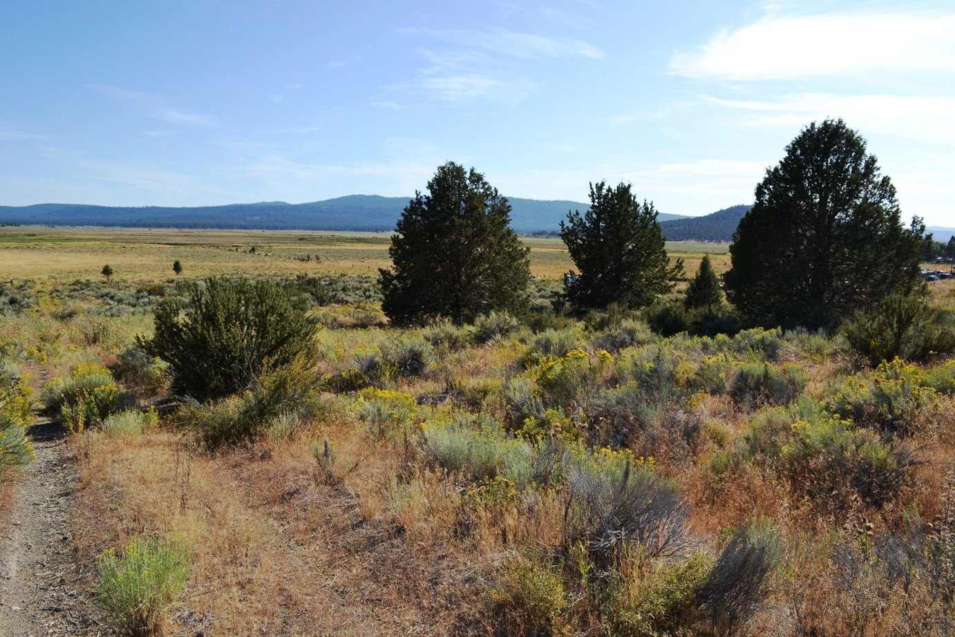 """<span style=""""color: red"""">*CONTRACT PENDING*</span>  - Corner Lot on Paved Drews Ranch Road with Power – Sprague River"""