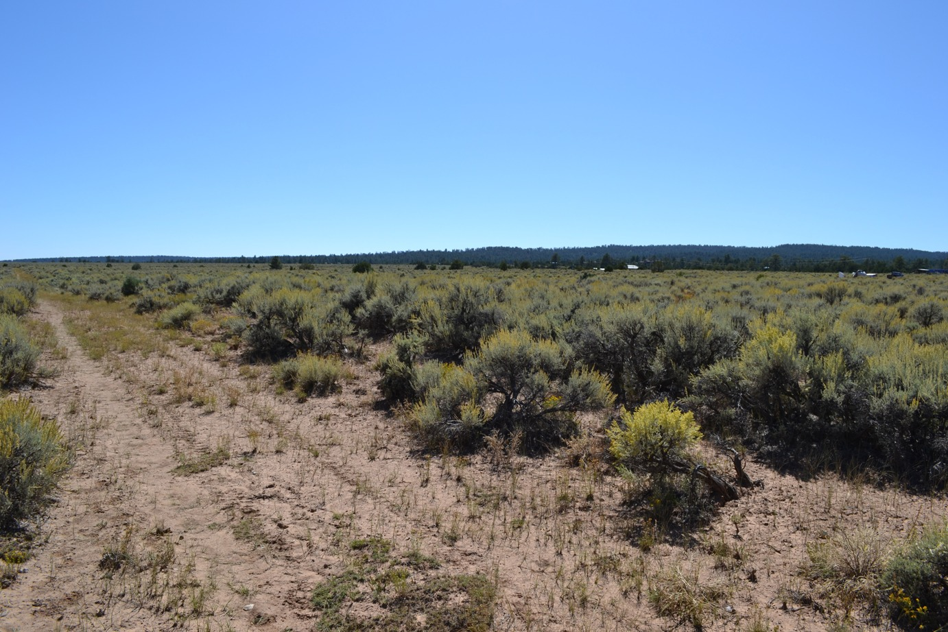 """<span style=""""color: red"""">*CONTRACT PENDING*</span>  - Four Lots Totaling One Buildable Acre in Highland Estates – Tres Piedras NM Near Taos"""