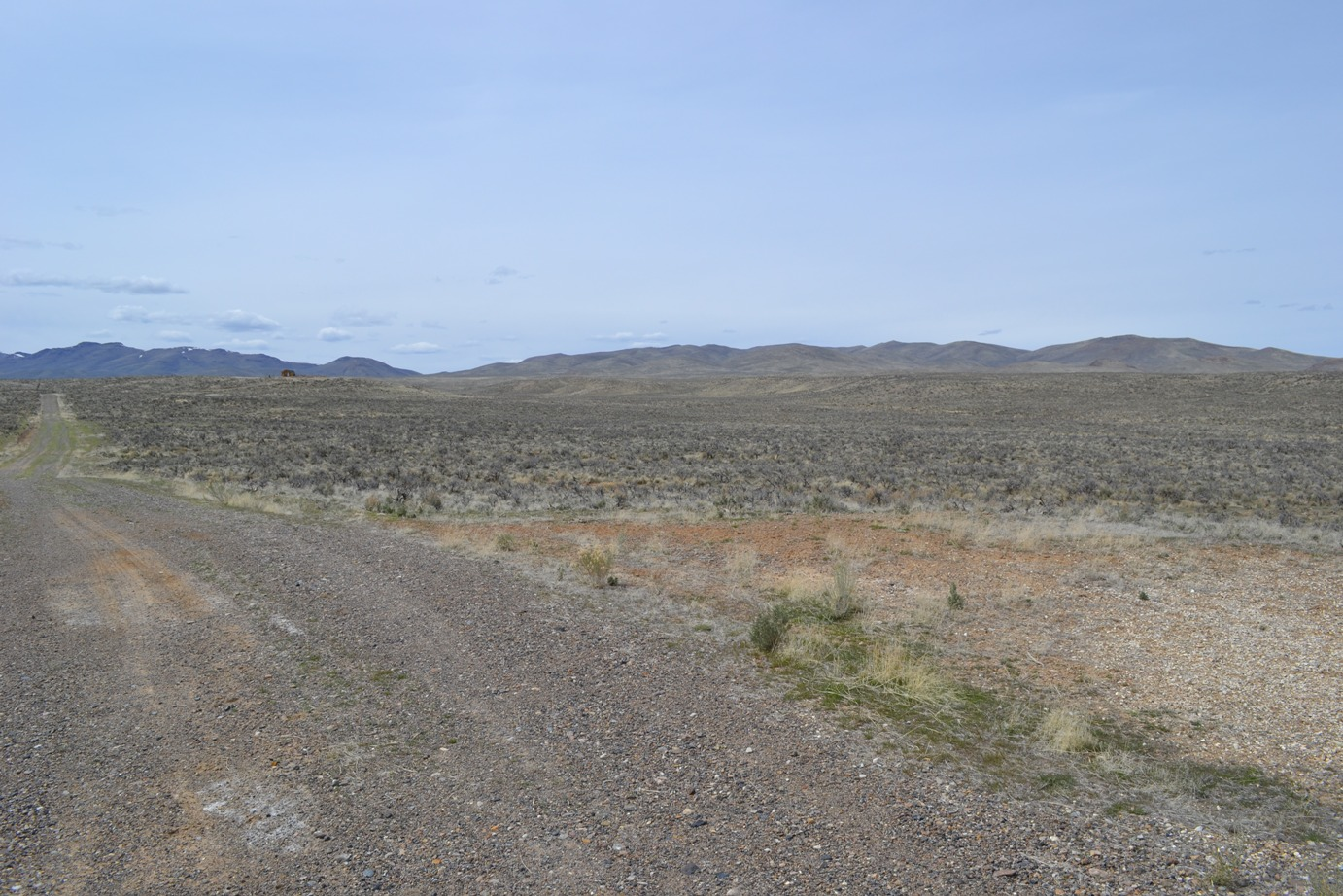 Spacious 20 Acre Parcel NW of Elko NV – Maintained Road