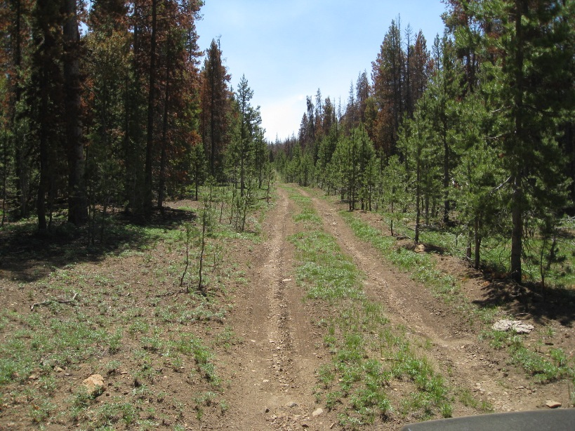 Camping Lot in South Central Oregon Mountains Near 2 Lakes