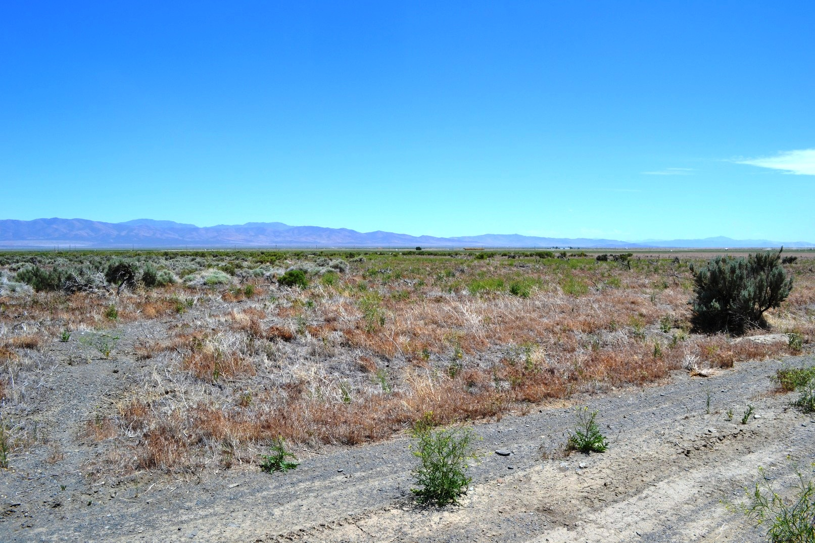 Paradise Valley 5 Acres – North of Winnemucca